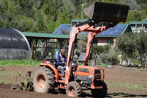 Roxy tractor3