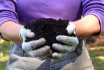compost-hands 2