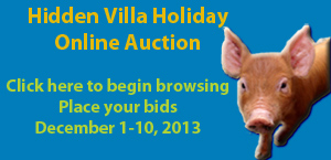 holiday auction2-2
