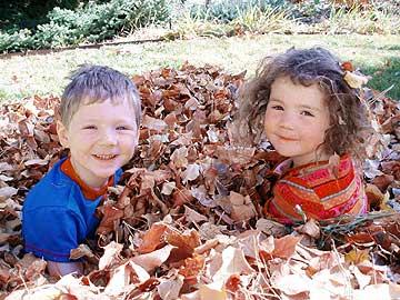 preschoolers on the farm
