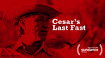 Cesar 2